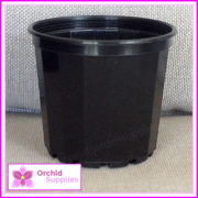 70mm-New-Gen-orchid-Pot-3