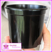 105mm-MIDI-orchid-Pot-2