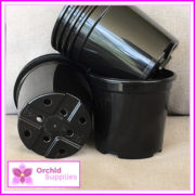 105mm-MIDI-orchid-Pot-3