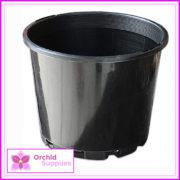 125mm-orchid-Squat-Pot-2