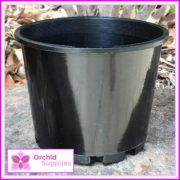 140mm-Squat-Orchid-Pot-4