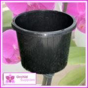 175mm-Squat-orchid-Pot-2