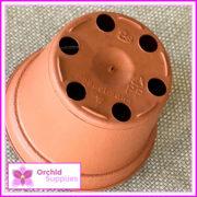 55mm-Teku-orchid-Squat-pot-3