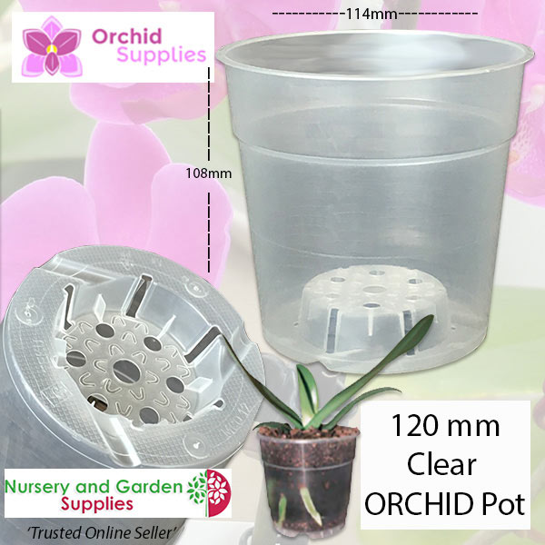 TEKU Clear Phalaenopsis Orchid Pot - Orchid Growing Supplies - For more information go to Orchidsupplies.com.au