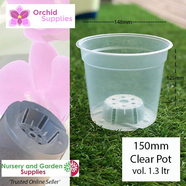 150mm Clear TEKU Phalaenopsis Orchid Pot - Orchid Growing Supplies - For more information go to Orchidsupplies.com.au