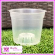 150mm-TEKU-CLEAR-orchid-pot-20