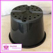 200mm-Squat-Orchid-Pot-2