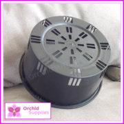 200mm-Squat-Orchid-Pot-Shallow-2