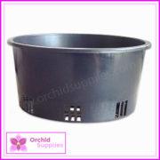 200mm-Squat-Orchid-Pot-Shallow-3