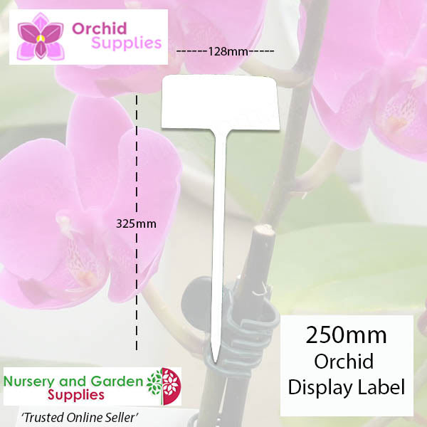 250mm Orchid Display Label - Orchid Growing Supplies - For more information go to Orchidsupplies.com.au