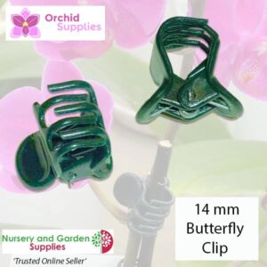 14mm Butterfly Clip Orchid Flower Stem - for more info go to orchidsupplies.com.au