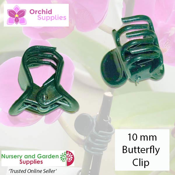 10mm Butterfly Clip Orchid Flower Stem - for more info go to orchidsupplies.com.au