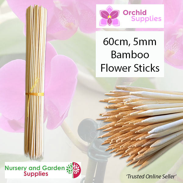 60cm Bamboo Orchid Flower Sticks 5mm - Orchid Growing Supplies - For more information go to Orchidsupplies.com.au