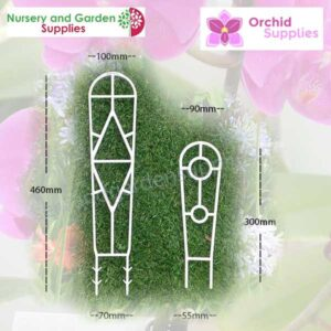 Orchid ladders