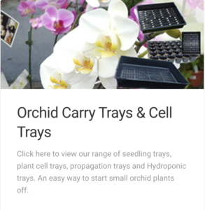 Orchid Trays