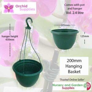 200mm Hanging Basket Green