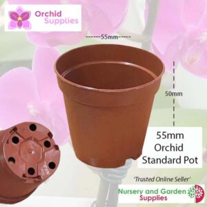 55mm TEKU Standard Orchid Pot