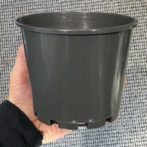140mm Squat Pot Charcoal Orchid